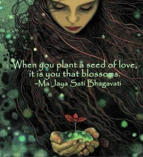 You are the Seed in the Earth